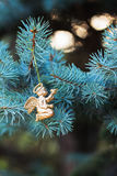 Golden angel with a bird on blue spruce. Place for text. Element  Christmas design. Stock Photo