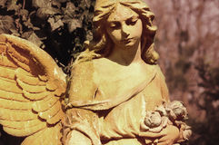 Golden angel in the sunlight (antique statue) Royalty Free Stock Photography