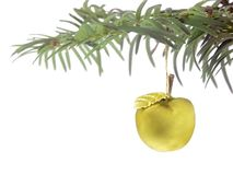 Golden apple Stock Image