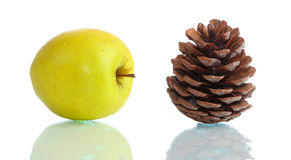 Golden apple and big cone on glass surface isolated Stock Photography