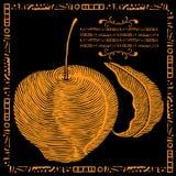 Golden apple and leaf illustration Royalty Free Stock Images