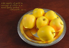 Golden apples proverb Stock Image