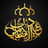 Golden Arabic calligraphy text Eid-Al-Adha celebration. Stylish golden Arabic calligraphy text Eid-Al-Adha Mubarak for Muslim Community Festival of Sacrifice Royalty Free Stock Photo