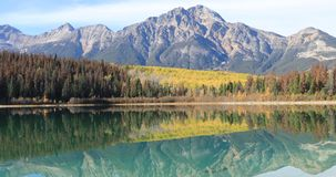 Golden aspens reflected in the rocky mountains 4K stock footage