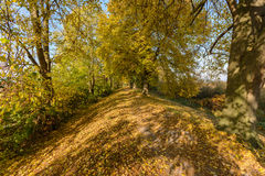 Golden Autum Royalty Free Stock Images