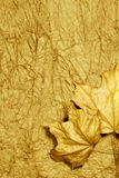 Golden autumn background. Two maple leaves on a wrinkled paper, golden-yellow tone Stock Photo