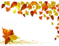 Golden autumn background Royalty Free Stock Images
