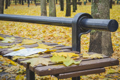 Golden autumn. Beautiful maple leaves on a bench. Golden autumn. Beautiful maple leaves and newspaper on a bench in October. Kiev, Ukraine royalty free stock photography
