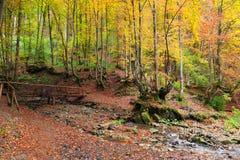 Golden Autumn in the Carpathians Royalty Free Stock Photo