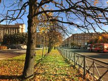 golden autumn in the city Royalty Free Stock Photo