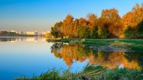Golden autumn on the city lake, Moscow, Russia stock image