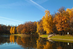 Golden autumn Royalty Free Stock Photography