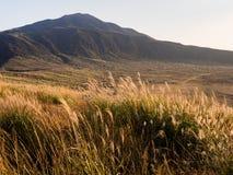 Golden autumn grass at Kusasenri Plateau inside Aso volcanic caldera. Aso-Kuju National Park, Kumamoto prefecture stock images
