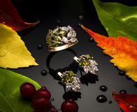 Golden autumn. Jewelry on a black background with autumn leaves Stock Photos