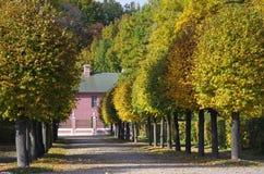 Golden autumn in Kuskovo Stock Photo