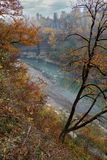 Golden autumn landscape of rapid mountain river gorge. Top view Stock Photo