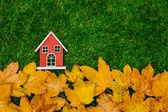 Golden autumn maple leaves and little wooden house. On green grass. Above view stock photo