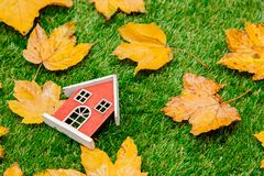 Golden autumn maple leaves and little wooden house. On green grass. Above view royalty free stock photography