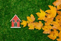 Golden autumn maple leaves and little wooden house. On green grass. Above view stock images