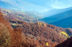 Golden autumn in mountain. Royalty Free Stock Image