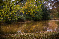 Golden autumn in Netherlands. A such as peacefull place Royalty Free Stock Photos