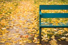Wooden bench with leaves in autumn park. Golden autumn. Obsolete wooden bench painted in blue color with fallen yellow leaves on bright colorful background of royalty free stock images