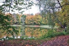 Golden autumn in the old Park stock photos