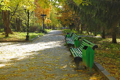 Golden autumn in the park Royalty Free Stock Photography