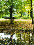 Golden autumn park bench Royalty Free Stock Photos