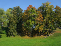 Golden autumn. Trees in the park. Royalty Free Stock Photos