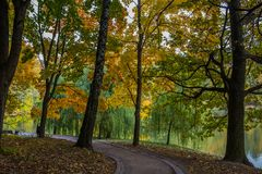 Golden Autumn in the park Tsaritsyno (Moscow) Royalty Free Stock Image