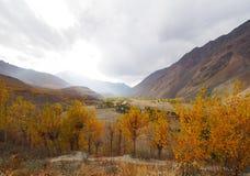 Golden Autumn In Phander Valley, Phander Lake, Ghizer District, Gilgit Baltistan, Pakistan Royalty Free Stock Image