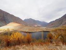 Golden Autumn In Phander Valley, Phander Lake, Ghizer District, Gilgit Baltistan, Pakistan Stock Images