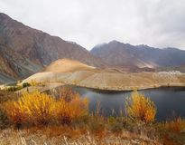 Golden Autumn In Phander Valley, Phander Lake, Ghizer District, Gilgit Baltistan, Pakistan Royalty Free Stock Photography