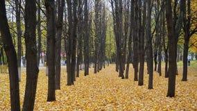 Golden Autumn in Russia. Naberezhnye Chelny city stock photos