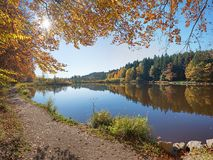Golden autumn scenery at moor lake. Golden autumn scenery at bavarian moor lake, sunny day in october stock photos