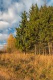 Golden autumn in the suburbs. Royalty Free Stock Photos