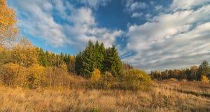 Golden autumn in the suburbs. Stock Image