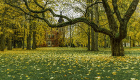 Golden Autumn. Tampere, Finland. Royalty Free Stock Images