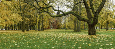 Golden Autumn. Tampere, Finland. Picture taken in Tampere, Finland Stock Photos