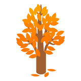 Golden autumn tree icon, isometric 3d style. Golden autumn tree icon in isometric 3d style on a white background Stock Image