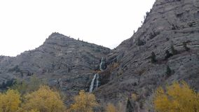 Golden Autumn Trees in South Fork Canyon stock photo
