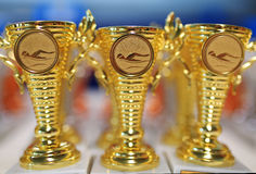 Golden award cups. Many of golden award cup stock image