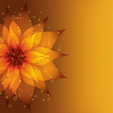 Golden background with decorative flower Stock Images