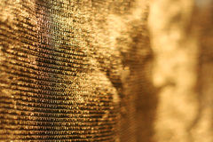 Golden background of net  Stock Images