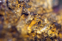 Golden background for You designs macro photo gem. Golden background for You designs, macro photo gem Royalty Free Stock Photos