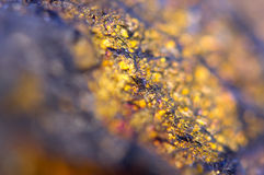 Golden background for You designs macro photo gem Royalty Free Stock Photography