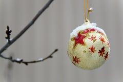 Golden ball on a branch. Royalty Free Stock Photos