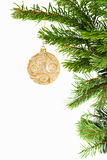 Golden ball on christmas tree stock image