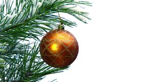 Golden Ball On Christmas Tree Branch stock video
